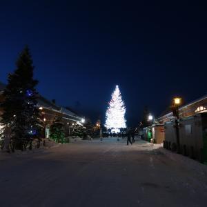 ホワイトクリスマスファンタジー!