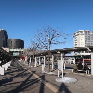 函館駅前のホテル模様