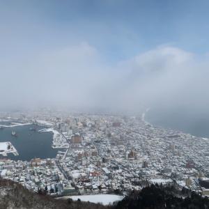友人に見せたかった函館山からの雪景色