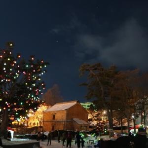 元町公園の「ひかりの実」と冬花火