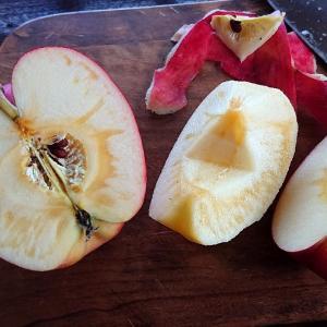 秋深まり、りんごラッシュ