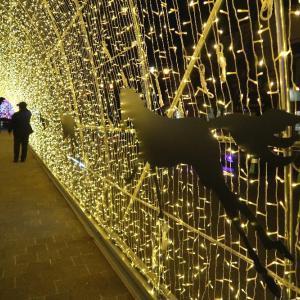 大門グリーンプラザに光のトンネル