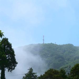 快晴と海霧の間で、雲海の季節