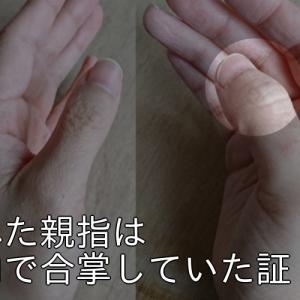 潰れた親指は胎内で合掌していた証。自分が生まれたときの話を振り返る