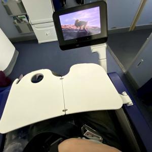 【ANA】羽田(東京)✈シャルル・ド・ゴール(パリ)搭乗記!非常口座席と通常座席の比較も!