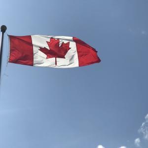 カナダに来て1ヶ月後のリアルな話【ワーホリ・部屋・仕事・友達】