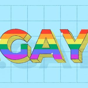 .gay ドメインの先行登録期間 (ランドラッシュ) が開始しました!
