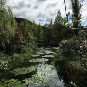 162日目 モネの愛した庭