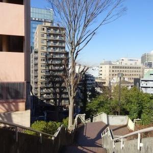 松戸駅東口、高台の歴史