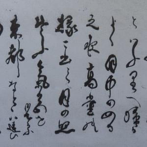 渡辺刀水収集文書№89
