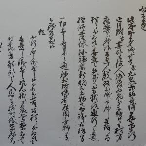 2020年11月14日解読文 異国船渡来録(12)