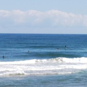 サーフィンからの釣りとちょいランチ