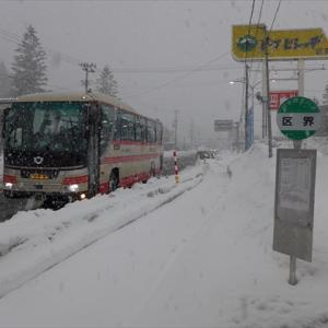 三連休北東北20冬(26) 岩手県北バス106急行 (盛岡→区界) ~市境のトンネルを抜けるとそこは・・・~