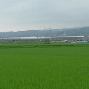 東海私鉄駅巡り20夏(2) 東海道本線 東田子の浦駅 ~雲隠れの富士山に向かって歩く~