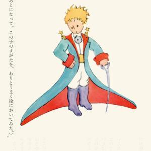 【第八回】立派な大人のひとたちへ『あのときの王子くん』(サン・テグジュペリ/著)