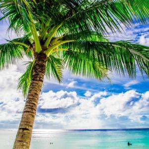 【よーいドン!】沖縄・グアム・ハワイH.I.Sお得な旅行プランの紹介9月12日放送
