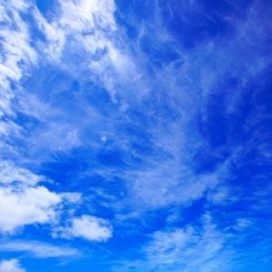 北乃きい兄弟10人!家族や経歴・プロフィールまとめ【おしゃれイズム】9月22日放送