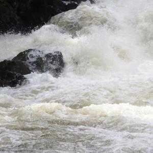多摩川氾濫の水位は現在どれくらい?!近隣の方は無事?【台風19号】