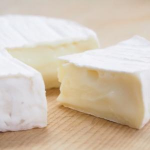 伊藤健太郎さんが食べたチーズ専門店のお店は??/おしゃれイズム