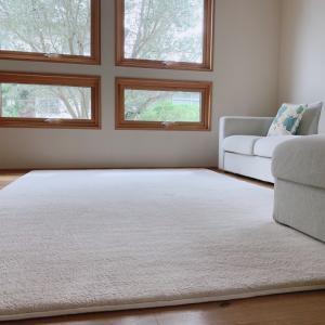 *冬支度*リビングカーペットの掃除とホットカーペット