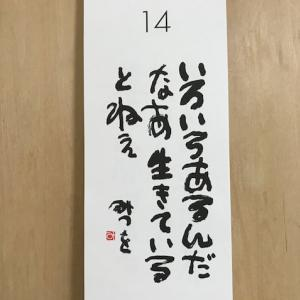 7月14日の記録!