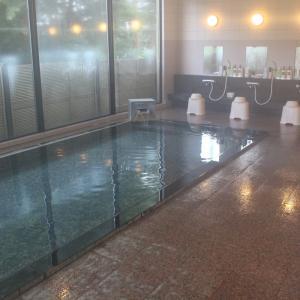 早太郎温泉「ホテルやまぶき」宿泊記