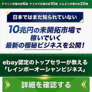 志村康善 レインボーオーシャンビジネスの考察