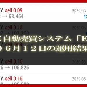 【MT4 EA】06月12日の運用結果【FX自動売買】