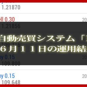 【MT4 EA】06月11日の運用結果【FX自動売買】