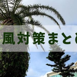 沖縄育ちの私がまとめた台風対策と心構え