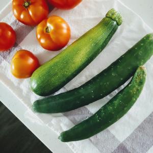 夏野菜と物々交換★