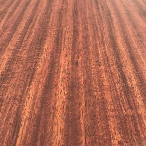 【図鑑】木材の構造と細かい名称!ギターに使われるのはどの部分?