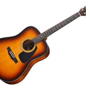 アコースティックギターの種類