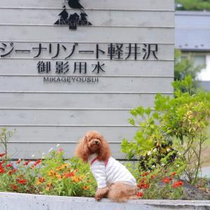 2019秋旅行♪軽井沢初日のお宿&ディナー♪