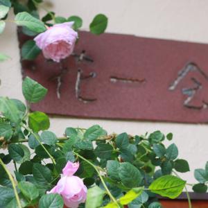 花一会さんの薔薇のお庭で♪