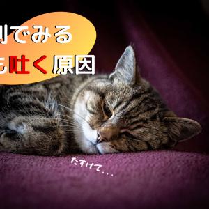 猫が1日に何回も吐く原因は?色から分かる病気と対処法