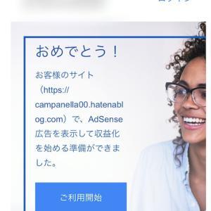 Google Adsenseは独自ドメインじゃないと合格できない…?(再掲)