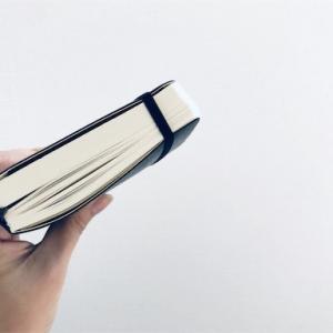モレスキン日記、進捗状況 3