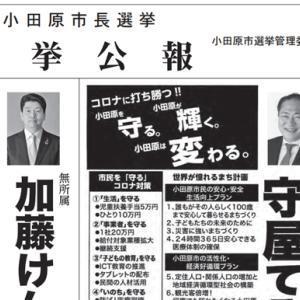 小田原市長選のやったもん勝ちの話