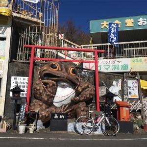 明けましてガマ様 〜筑波山〜