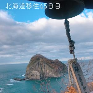 北海道移住45日目