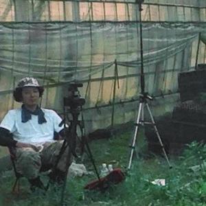農業 修行編2「ひたすら草刈り」