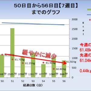 ダイエット9週目【57日目~63日目】までの週次報告