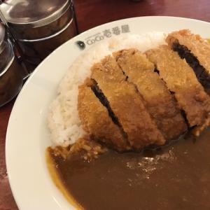 日本と違う!?アメリカのココ壱番屋カレーは子供も楽しいレストラン♪