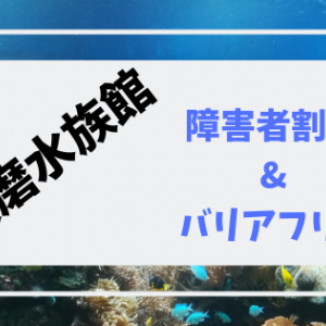 須磨水族館が障害者割引で無料に!車椅子で行ってみた体験レポ【写真あり】