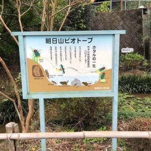 おやじオススメ!朝日山城跡へGo!!