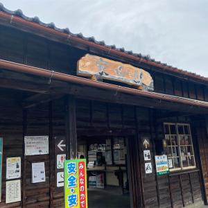 """""""渡り蝶""""アサギマダラに会いに行ってきました!!"""