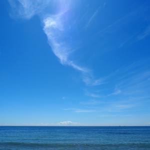 海を見にいく。