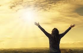 太陽光の売電が再開しました! ~休業補償保険の重要性~
