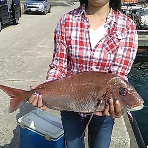 沼島の真鯛釣り 2019年10月